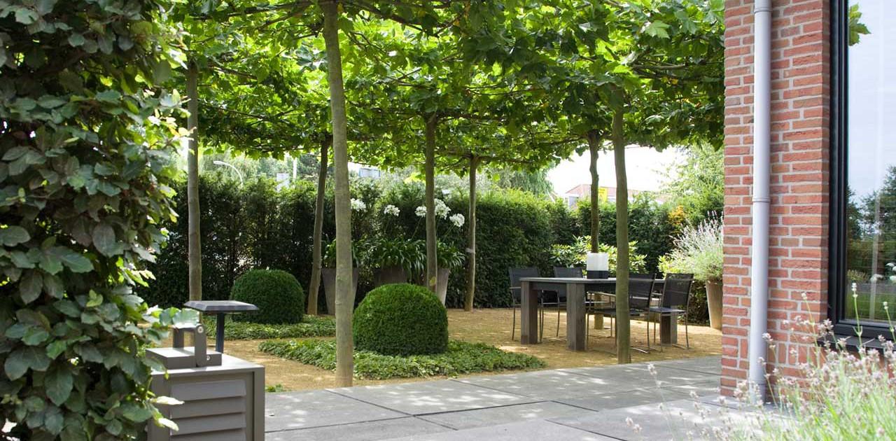 Klassieke tuin in nootdorp i martin veltkamp tuinen for Landelijke stadstuin