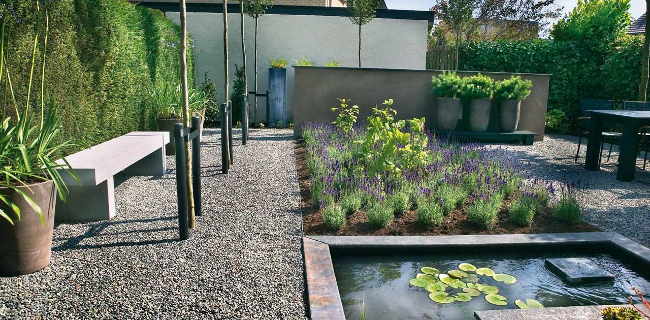 Kleine achtertuin in bergschenhoek i martin veltkamp tuinen - Klein zwembad in de kleine tuin ...