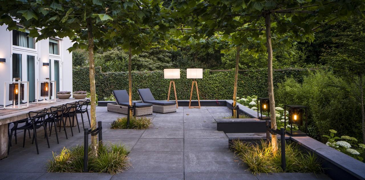 Moderne tuin met verlichting i martin veltkamp tuinen for De tuinen rotterdam