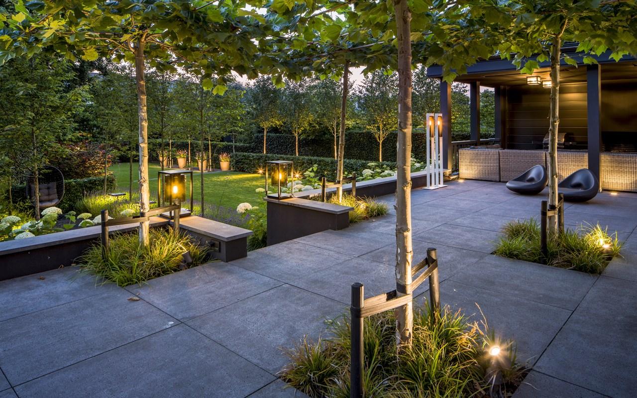 Moderne tuin met verlichting i martin veltkamp tuinen